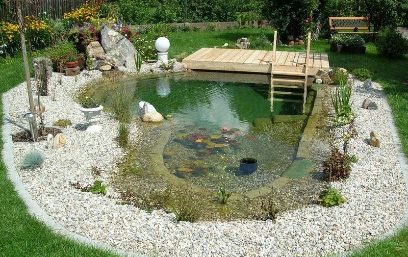 Natural-pool